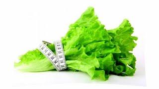 Идеи для дома| Как хранить листья салата полезные советы для кухни