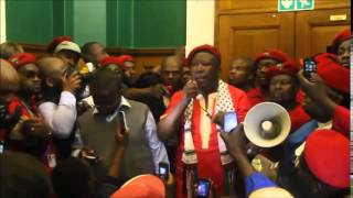 EFF wreck havoc at Gauteng legislature
