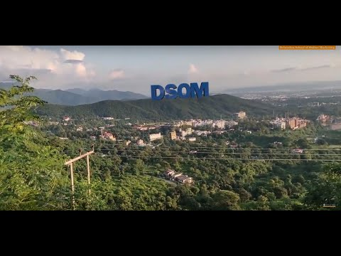 DSOM - Digital Marketing Institute in Dehradun | start your digital marketing course in dehradun