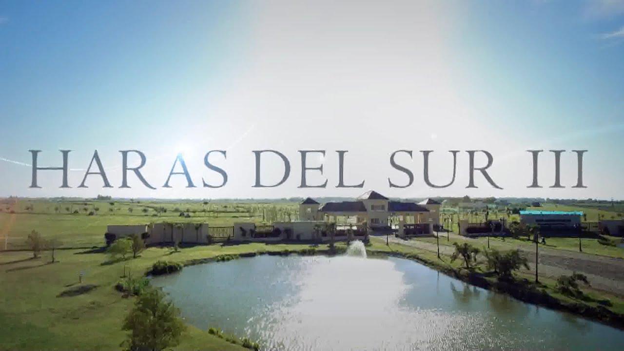 Avance de obra haras del sur iii youtube - Microcementos del sur ...