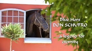 """Blue Hors - """"Don Schufro"""" Einer lebenden Legende wird ein Denkmal gesetzt"""