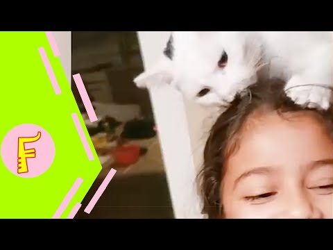 Baby and Cat Fun and Cute #9 - Funny Baby Video