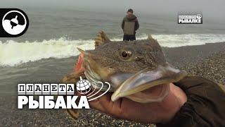 Рыбалка на Камчатке Охотское море Планета рыбака