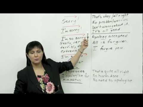 5 ways to say sorry - Polite English - HD-4.Com