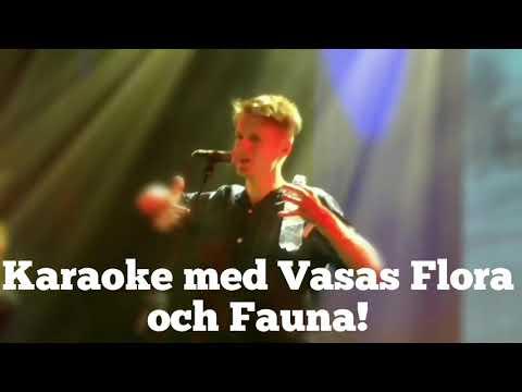 Karaoke med Vasas Flora och Fauna, Way Out West 2017