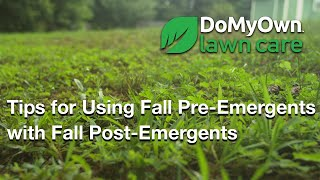 Using Fall Pre-Emergents with Fall Post-Emergents