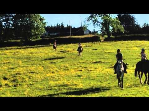 Hazelden equestrian