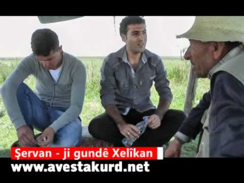 Servan Xelikan.wmv