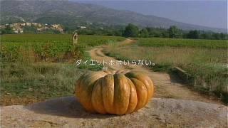 Repeat youtube video いいなCM キューピー マヨネーズ 「畑とカボチャ」篇
