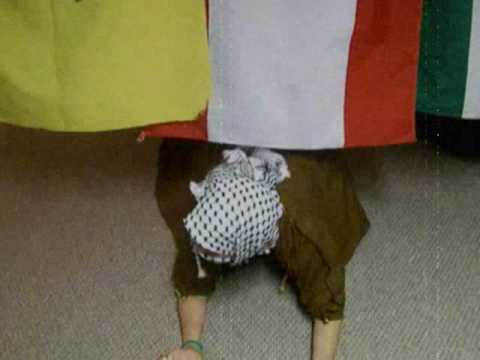 Arab Prison Break