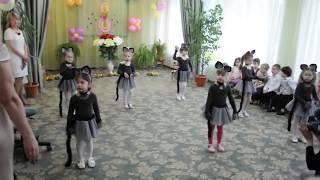 Фото Танец кошечек