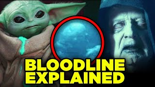 BABY YODA PALPATINE LINK! Mandalorian Force Awakens & First Order Timeline Explained!