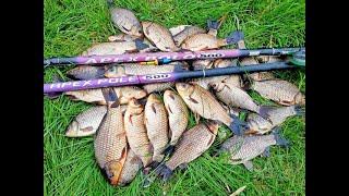 Убийца карася косит рыбу Рыбалка на озере