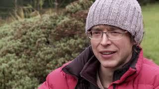 Ben Bransby climbs Parthian Shot (E9 6c)