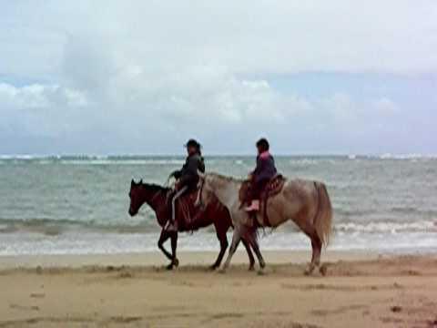 Riding horse on Punalu