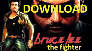 Download Bruce Lee The Fighter 2015 Hindi Dubbed 350MB DTHRip 480p Full HD