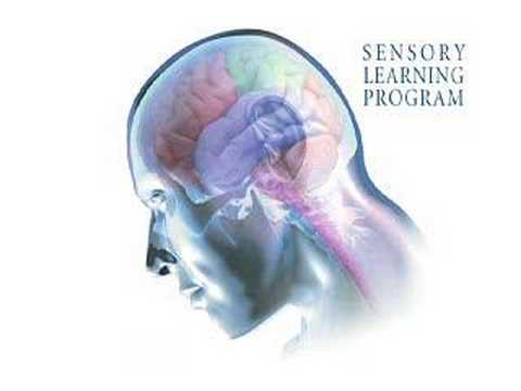 How the Sensory Learning Program works