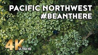 Bean Trailer – Pacific Northwest Breathtaking Scenery (4K Video, Teardrop Trailer, Camping)