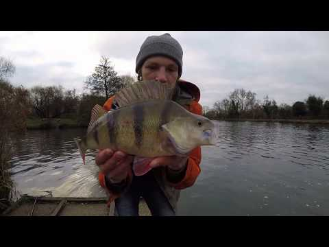 Crazy Winter Perch Fishing With Lures