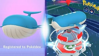 MY WAILORD! IS IT WORTH POWERING UP? BATTLE TEST + WAILORD AS MY BUDDY IS INCREDIBLE - POKEMON GO