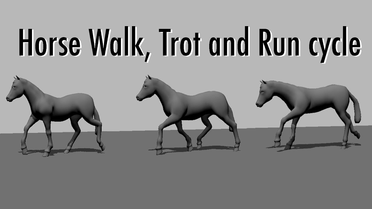 horse walk trot and gallop animation cycles [ 1280 x 720 Pixel ]