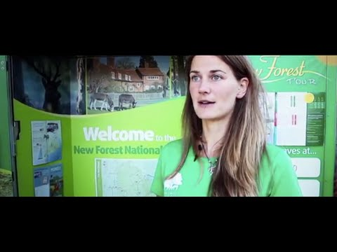 New Forest Travel Concierge
