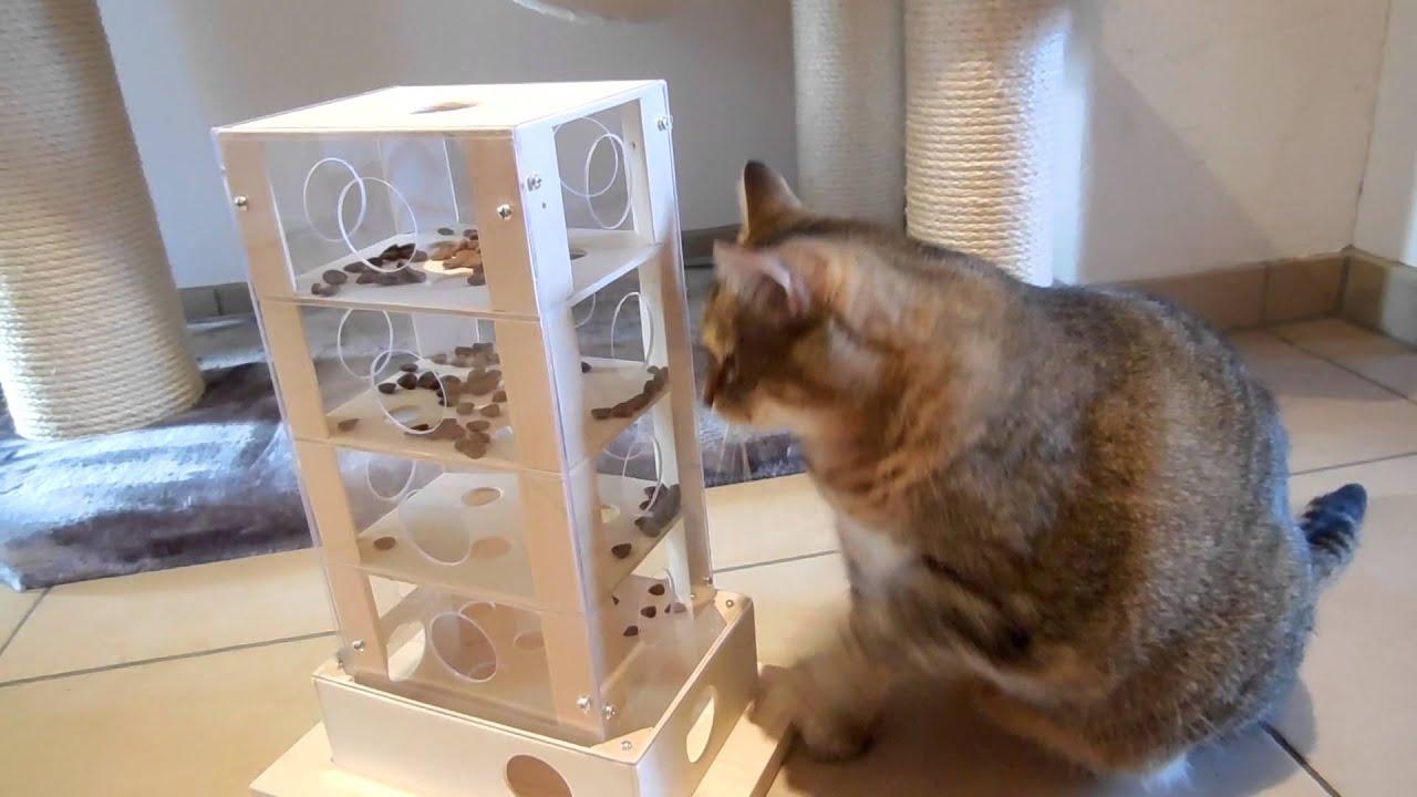 Spielzeug für die Katze YouTube ~ 02055936_Sukkulenten Für Katzen Giftig