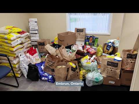 Drive Away Hunger Photos 2019 | BDO Canada