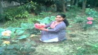 chander hasir bandh bhengeche by saraswati soren