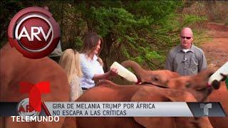 El susto de Melania Trump en un santuario de elefantes   Al Rojo Vivo   Telemundo