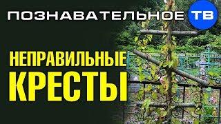 Неправильные кресты на кладбище в Осоргино  (Познавательное ТВ, Артём Войтенков)