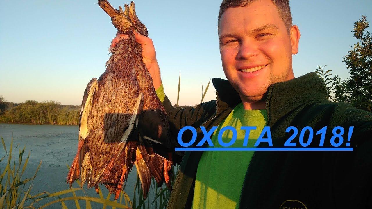 ОТКРЫТИЕ ОХОТЫ НА УТКУ 2018! ТАК Я ЕЩЕ НЕ ОХОТИЛСЯ. УТИНАЯ ОХОТА. Duck hunting in russia.