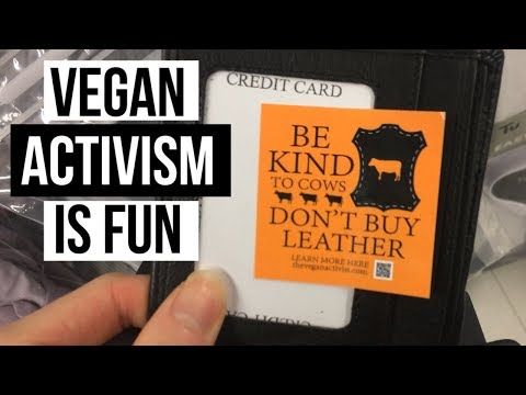 Vegan Activism Is Fun