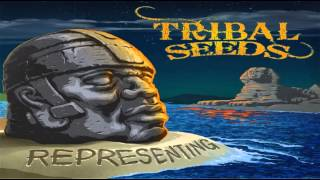 Tribal Seeds - Lonely Night