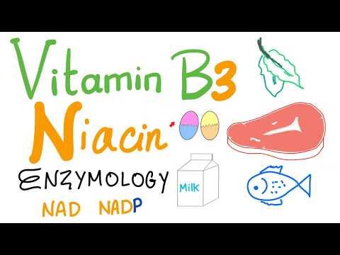 Vitamin B3 (Niacin) Enzymology [NAD and NADP]
