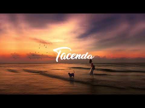 Avidanx - Lonely Nights