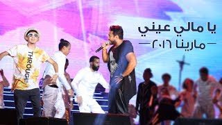 تامر حسني - يا مالي عيني | حفلة مرينا 2016