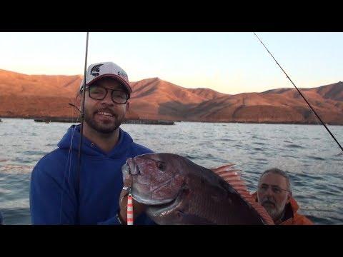 Pescare alle Canarie - Vertical Jigging a Lanzarote