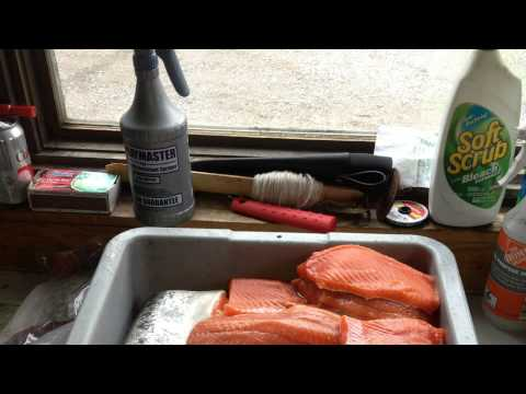 Silver Salmon Creek Lodge Alaska 13