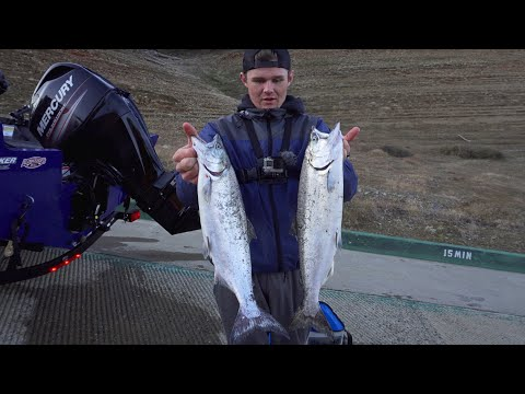 Big Landlocked King Salmon! ~Oroville Fishing Report~