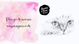 Скачать Рисуем кота карандашом