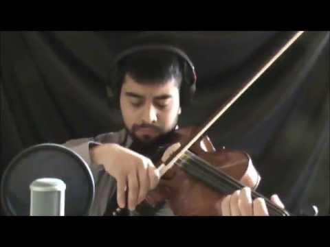 La memoria del corazón (edith Marquez) Luiz Valadez cover
