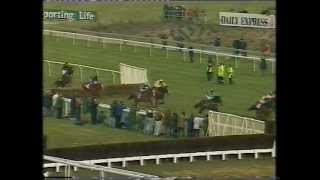 1996 Daily Express Triumph Hurdle
