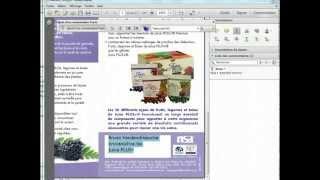 Modification dans un texte PDF