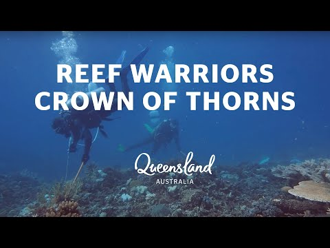 Reef Warriors: Col McKenzie Tackles Crown Of Thorns