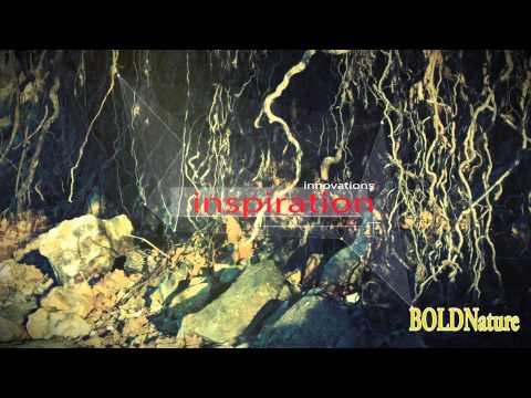Bold Nature Digital Promo Film