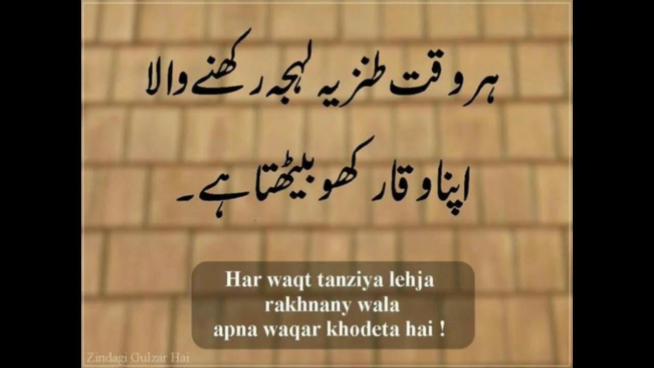 Best Collection Of L Urdu Quotes L Youtube