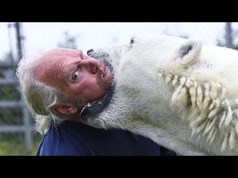 Вопрос: Какого цвета кожа полярного медведя?