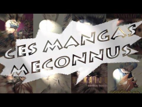ACHATS MANGA COMICS MARS 2018 - CES MANGAS MECONNUS