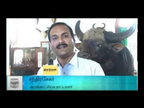 Forest Museum at Coimbatore-DINAMALAR
